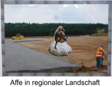Affe in regionaler Landschaft - Collage